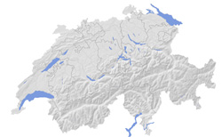 Switzerland relief and contour map.